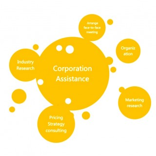8 corporation assistance jpg