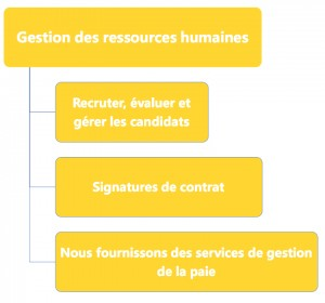FX JPG 9 Human Resorse Management F